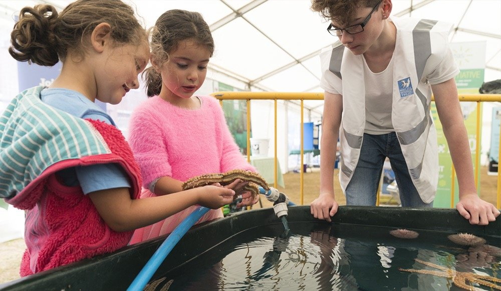 Manx Wildlife Trust organises the Marine Mega Tanks during the festival of the sea.