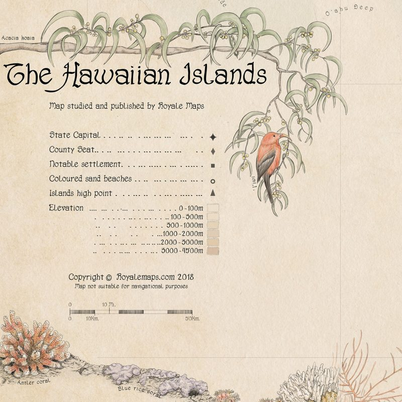 Ornamental Map of Hawaiian Islands - Vintage Style