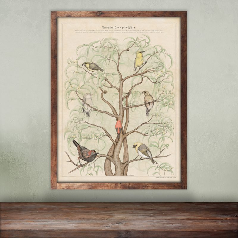Beautiful original wild birds art print on tree